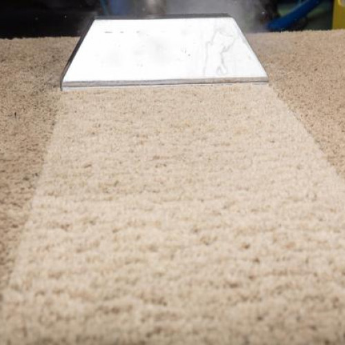 Carpet Cleaning Tacoma Review Home Decor