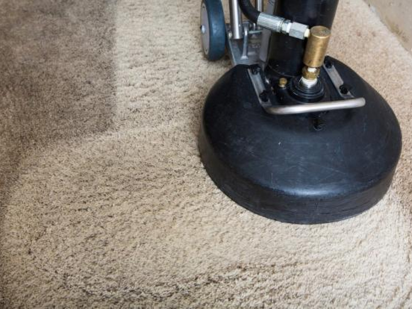 Find a Commercial Carpet Cleaning Service in Ravensdale, Covington, Maple Valley & Kent, WA